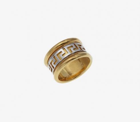 1013. ring